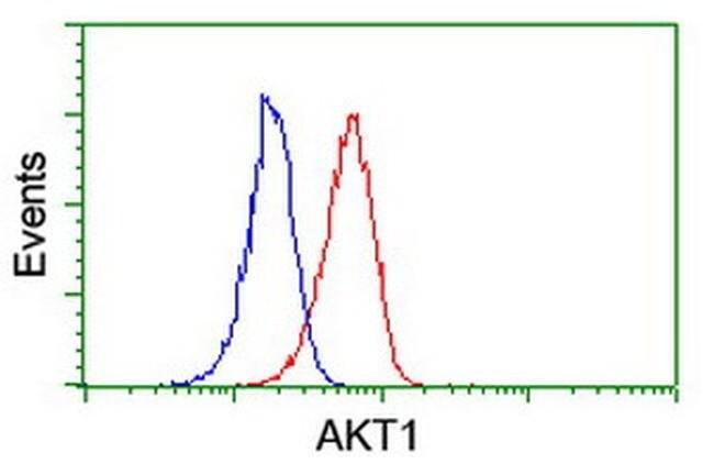 AKT1 Mouse anti-Canine, Human, Mouse, Rat, Clone: OTI4E10, liquid, TrueMAB