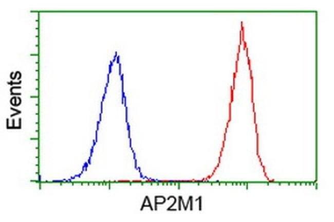 AP2M1 Mouse anti-Human, Clone: OTI1B11, liquid, TrueMAB  100 µL; Unconjugated
