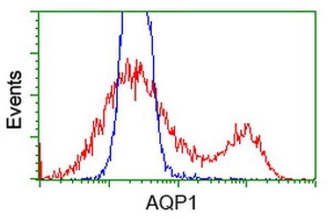 AQP1 Mouse anti-Human, Clone: OTI10C11, liquid, TrueMAB  30 µL; Unconjugated
