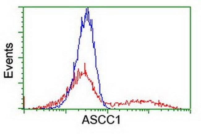 ASCC1 Mouse anti-Human, Clone: OTI1H10, liquid, TrueMAB  100 µL; Unconjugated