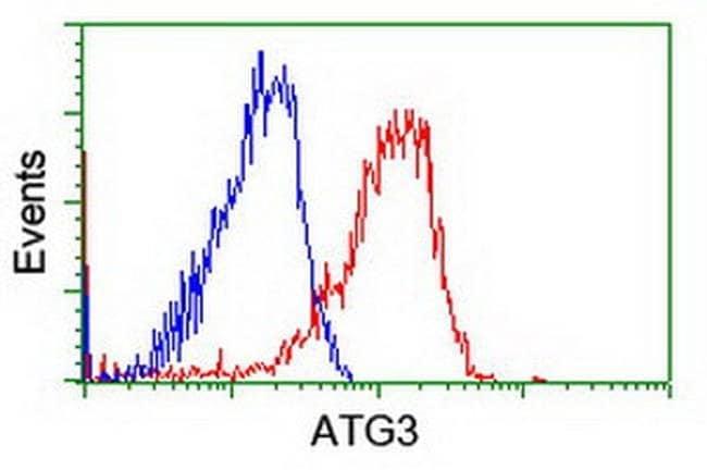 ATG3 Mouse anti-Canine, Human, Mouse, Rat, Clone: OTI3H2, liquid, TrueMAB