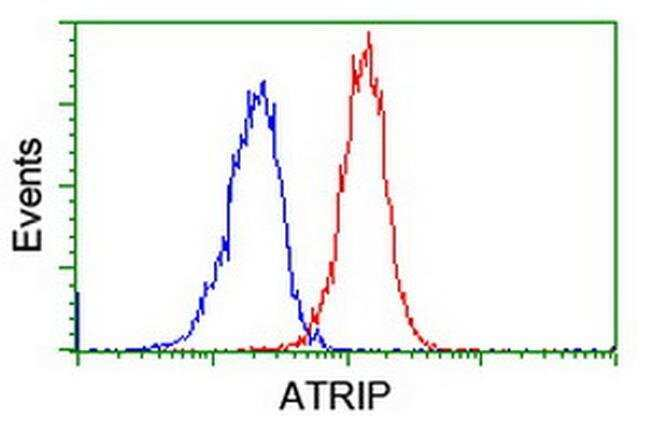 ATRIP Mouse anti-Canine, Human, Clone: OTI5E7, liquid, TrueMAB  30 µL;