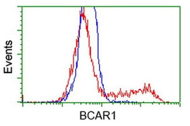 BCAR1 Mouse anti-Canine, Human, Mouse, Rat, Clone: OTI3A11, liquid, TrueMAB