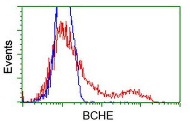 BCHE Mouse anti-Canine, Human, Clone: OTI1E1, liquid, TrueMAB  100 µL;