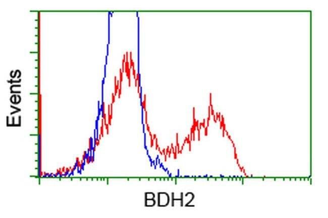 BDH2 Mouse anti-Human, Clone: OTI3G10, liquid, TrueMAB  100 µL; Unconjugated