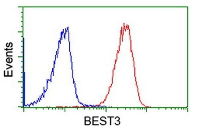 BEST3 Mouse anti-Human, Clone: OTI3D7, liquid, TrueMAB  100 µL; Unconjugated