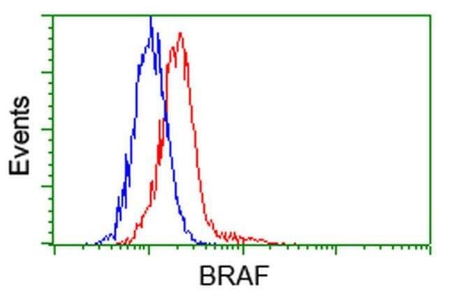 BRAF Mouse anti-Human, Clone: OTI1D2, liquid, TrueMAB  30 µL; Unconjugated