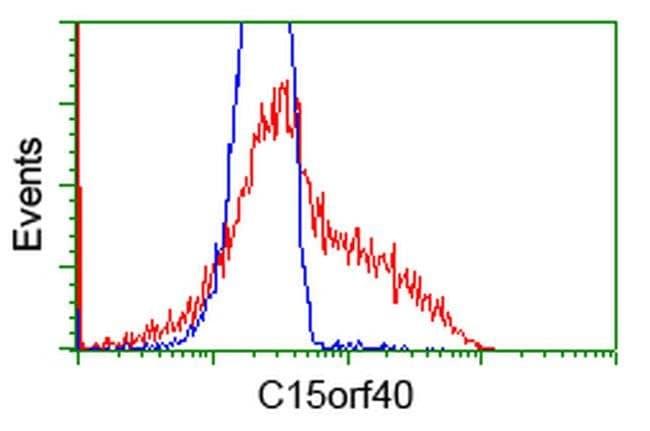 C15orf40 Mouse anti-Human, Clone: OTI2B7, liquid, TrueMAB  100 µL;