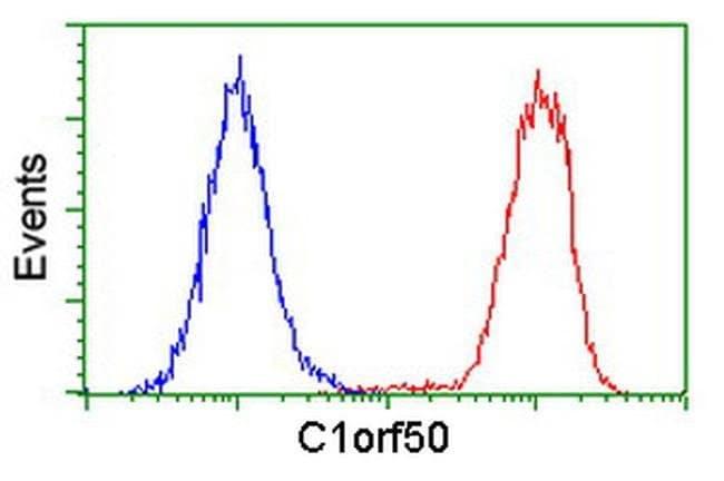 C1orf50 Mouse anti-Human, Clone: OTI1B11, liquid, TrueMAB  100 µL;