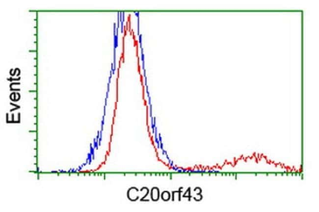 C20orf43 Mouse anti-Human, Clone: OTI7H1, liquid, TrueMAB  100 µL;