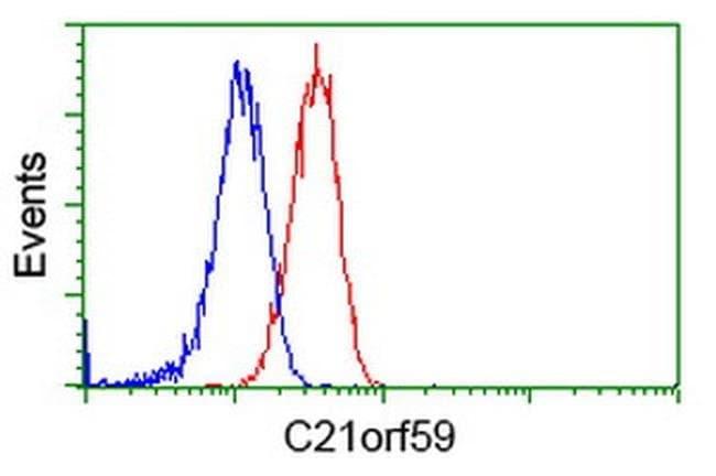 C21orf59 Mouse anti-Human, Clone: OTI2H5, liquid, TrueMAB  100 µL;
