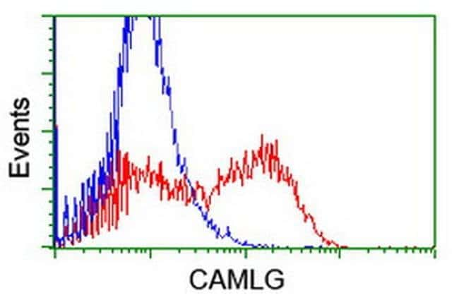 CAMLG Mouse anti-Human, Clone: OTI1H3, liquid, TrueMAB  100 µL; Unconjugated