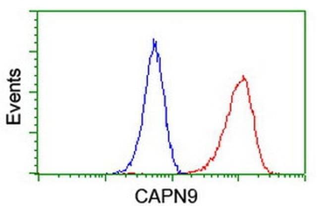 CAPN9 Mouse anti-Human, Clone: OTI2G1, liquid, TrueMAB  100 µL; Unconjugated