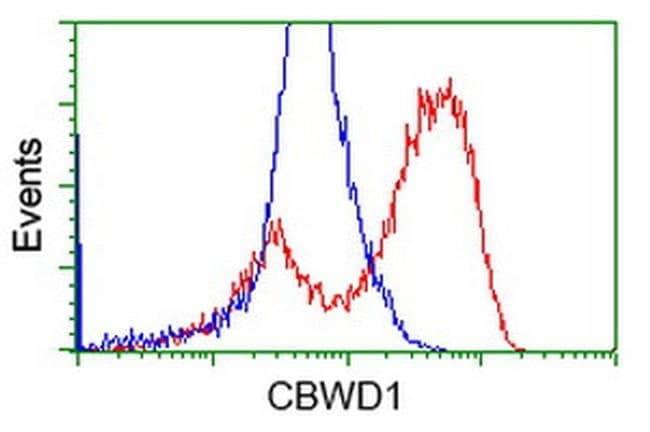 CBWD1 Mouse anti-Human, Clone: OTI9B8, liquid, TrueMAB  100 µL; Unconjugated
