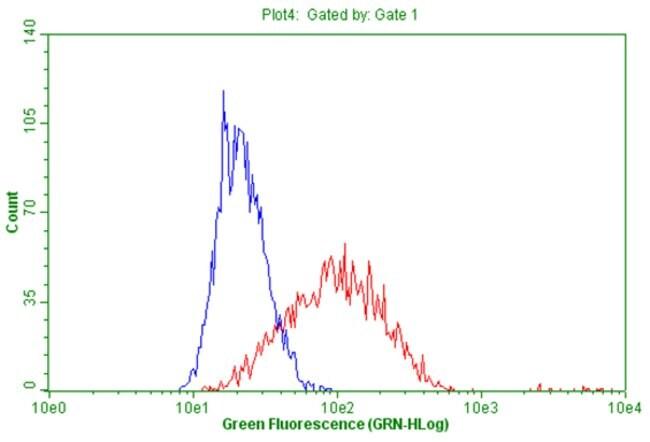 CD19 Mouse anti-Human, Clone: OTI2F6, liquid, TrueMAB  100 µL; Unconjugated