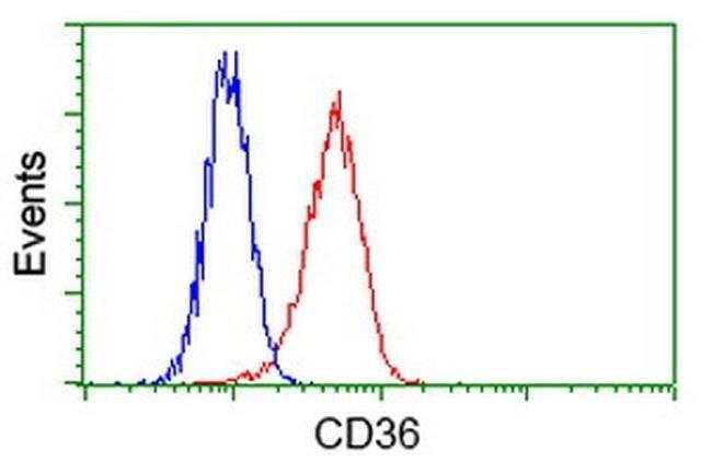 CD36 Mouse anti-Human, Clone: OTI4H7, liquid, TrueMAB  100 µL; Unconjugated