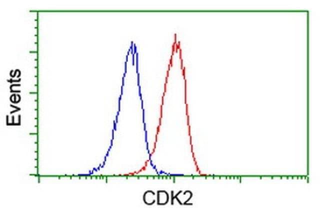 CDK2 Mouse anti-Human, Clone: OTI2F10, liquid, TrueMAB  100 µL; Unconjugated