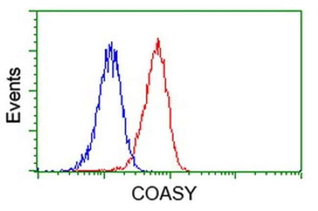 COASY Mouse anti-Human, Clone: OTI3D5, liquid, TrueMAB  100 µL; Unconjugated