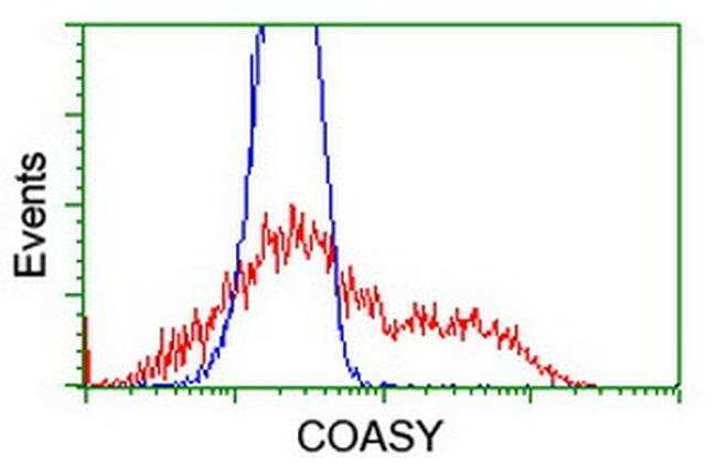 COASY Mouse anti-Human, Clone: OTI3B3, liquid, TrueMAB  100 µL; Unconjugated