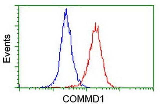 COMMD1 Mouse anti-Human, Clone: OTI2E2, liquid, TrueMAB  100 µL; Unconjugated