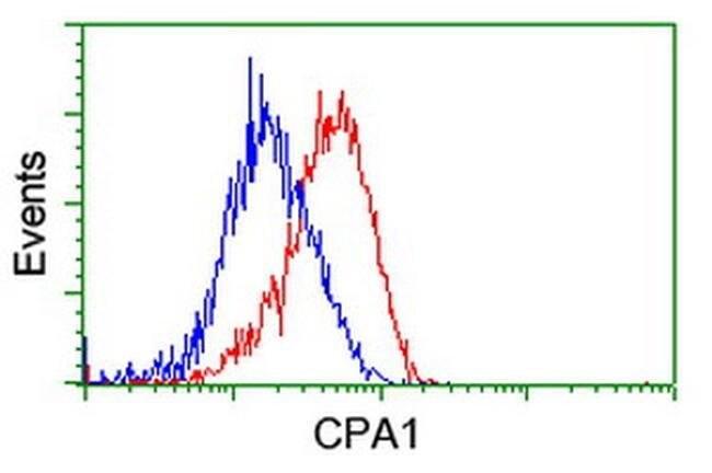 CPA1 (Carboxypeptidase A1) Mouse anti-Human, Clone: OTI4C3, liquid, TrueMAB