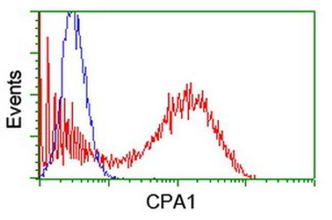 CPA1 (Carboxypeptidase A1) Mouse anti-Human, Clone: OTI1D11, liquid, TrueMAB
