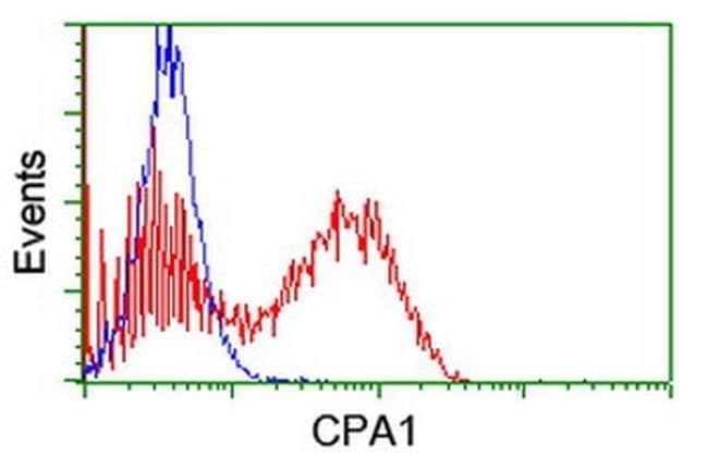 CPA1 (Carboxypeptidase A1) Mouse anti-Human, Clone: OTI4E12, liquid, TrueMAB