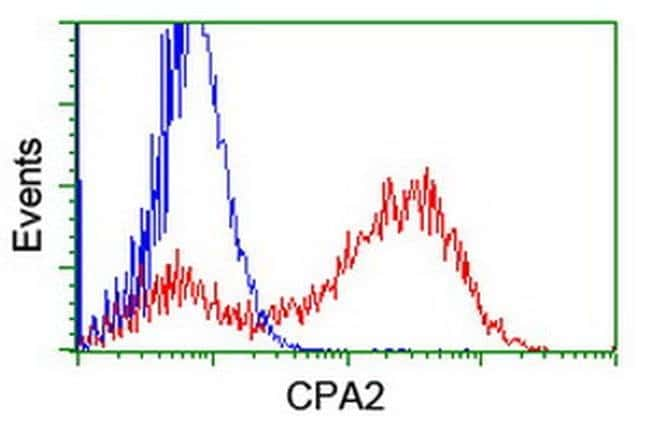 CPA2 Mouse anti-Human, Clone: OTI1D8, liquid, TrueMAB  100 µL; Unconjugated