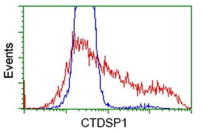 CTDSP1 Mouse anti-Human, Clone: OTI1G2, liquid, TrueMAB  100 µL; Unconjugated