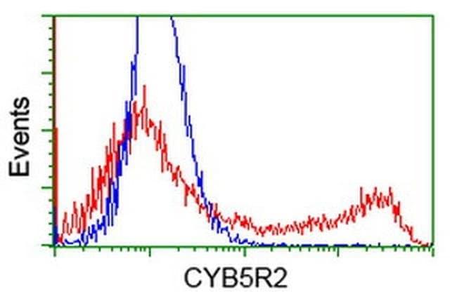 CYB5R2 Mouse anti-Human, Clone: OTI4B9, liquid, TrueMAB  100 µL; Unconjugated