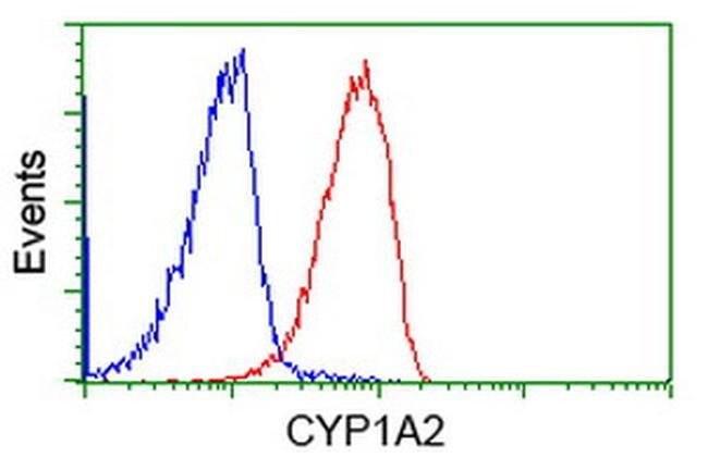 CYP1A2 Mouse anti-Human, Clone: OTI2C6, liquid, TrueMAB  100 µL; Unconjugated