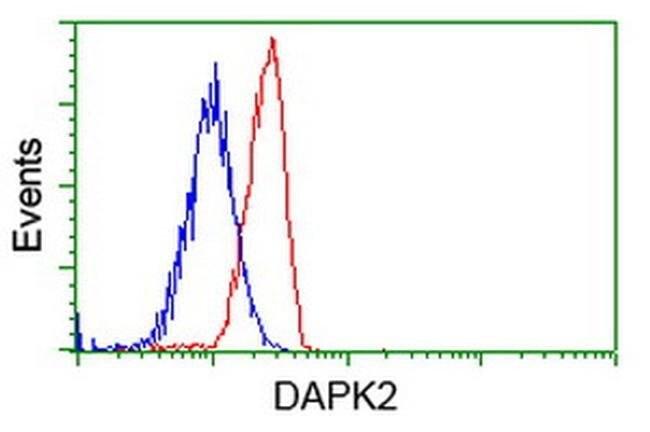 DAPK2 Mouse anti-Human, Clone: OTI1B10, liquid, TrueMAB  100 µL; Unconjugated