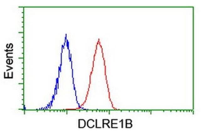 DCLRE1B Mouse anti-Human, Clone: OTI2B7, liquid, TrueMAB  100 µL;