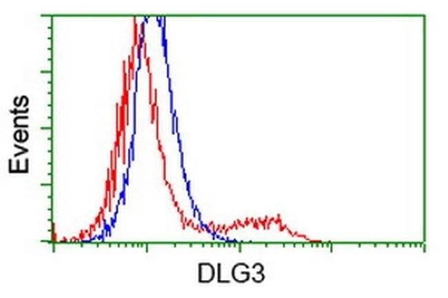 DLG3 Mouse anti-Human, Clone: OTI3F2, liquid, TrueMAB  100 µL; Unconjugated