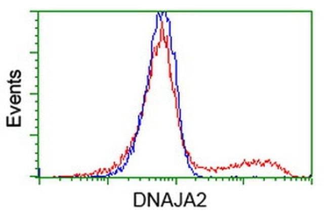 DNAJA2 Mouse anti-Canine, Human, Rat, Clone: OTI3H10, liquid, TrueMAB