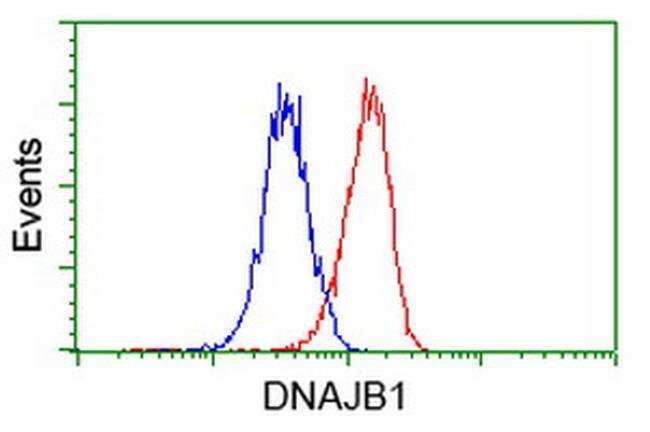 DNAJB1 Mouse anti-Canine, Human, Clone: OTI1G4, liquid, TrueMAB  100 µL;