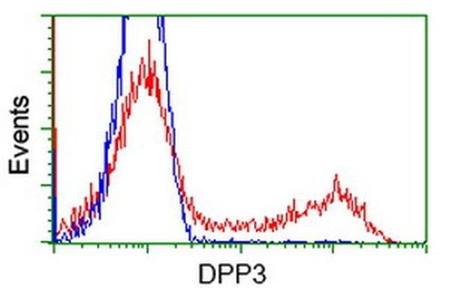 DPP3 Mouse anti-Human, Clone: OTI 3B5, liquid, TrueMAB  100 µL; Unconjugated
