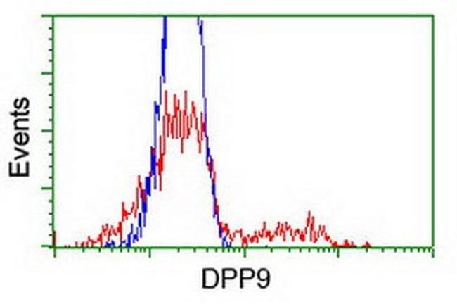 DPP9 Mouse anti-Canine, Human, Rat, Clone: OTI1G9, liquid, TrueMAB  100
