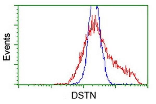 DSTN Mouse anti-Canine, Human, Clone: OTI2E10, liquid, TrueMAB  100 µL;