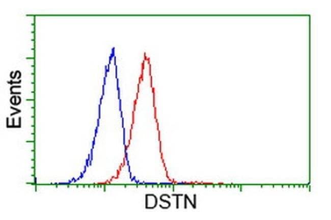 DSTN Mouse anti-Human, Clone: OTI1D5, liquid, TrueMAB  100 µL; Unconjugated