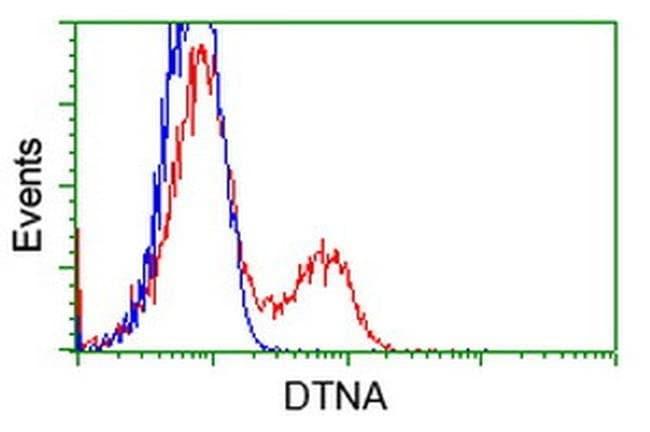 DTNA Mouse anti-Human, Clone: OTI1A2, liquid, TrueMAB  100 µL; Unconjugated