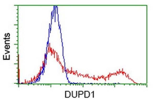 DUPD1 Mouse anti-Human, Clone: OTI1F3, liquid, TrueMAB  100 µL; Unconjugated