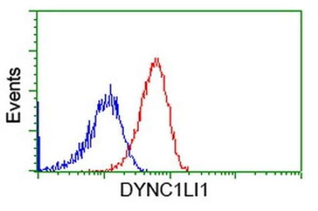 DYNC1LI1 Mouse anti-Human, Clone: OTI2E8, liquid, TrueMAB  100 µL;