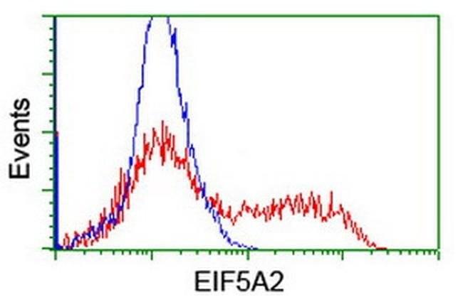 EIF5A2 Mouse anti-Human, Clone: OTI6G7, liquid, TrueMAB  100 µL; Unconjugated