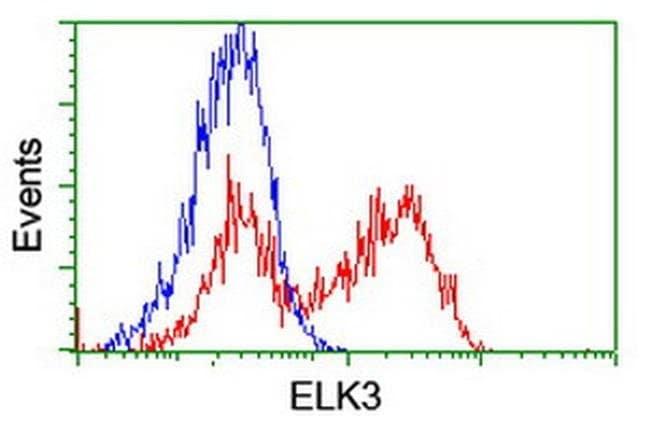 ELK3 Mouse anti-Human, Clone: OTI4G9, liquid, TrueMAB  100 µL; Unconjugated