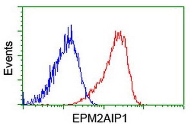 EPM2AIP1 Mouse anti-Human, Clone: OTI1G9, liquid, TrueMAB  100 µL;