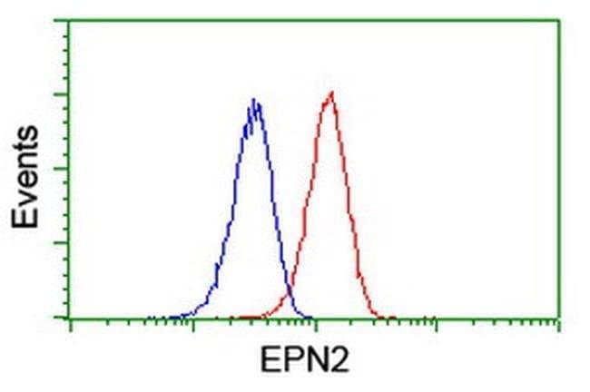 EPN2 Mouse anti-Human, Clone: OTI1B4, liquid, TrueMAB  100 µL; Unconjugated