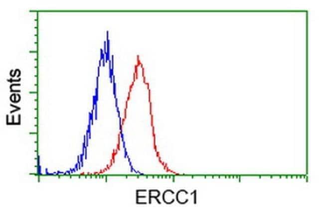 ERCC1 Mouse anti-Human, Clone: OTI1B3, liquid, TrueMAB  100 µL; Unconjugated