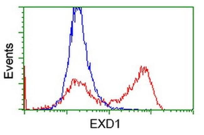 EXD1 Mouse anti-Human, Clone: OTI5H1, liquid, TrueMAB  100 µL; Unconjugated