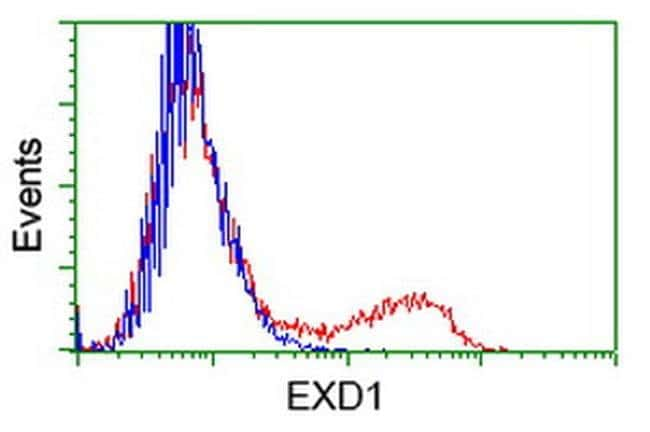 EXD1 Mouse anti-Human, Clone: OTI4D7, liquid, TrueMAB  100 µL; Unconjugated